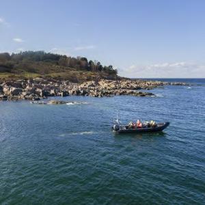 Boating Bornholm